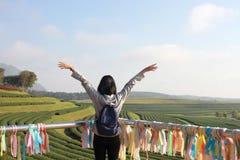 Donne felici con le mani su sulla piantagione di tè in Chiang Rai Fotografia Stock