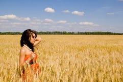 donne felici del frumento Fotografia Stock Libera da Diritti