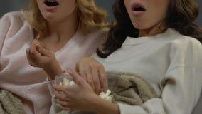 Donne graziose che spendono tempo a casa che guarda film emozionante sulla TV, tempo libero archivi video
