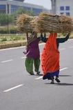 DONNE INDIANE DEL VILLAGGIO fotografia stock