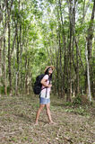 Donne tailandesi ritratto e viaggio nel pla dell'albero di gomma o di seringueira Fotografia Stock Libera da Diritti