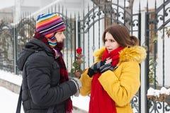 Donne une rose en hiver Photos libres de droits