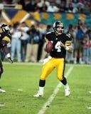 ` Donnell Нейл o, Питтсбурга Steelers стоковое фото rf