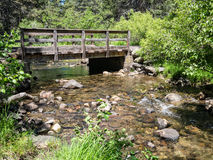 Donner Creek Nature Trail Royalty Free Stock Photography