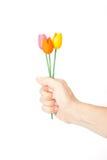 Donner des fleurs Images libres de droits