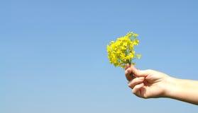 Donner des fleurs Image libre de droits