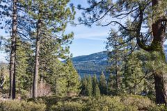 Donner Lake Stock Photography