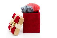 Donner le cadeau de la durée Photo stock