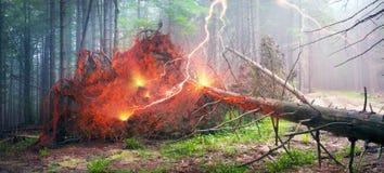 Donner- und Blitzschlag Lizenzfreies Stockfoto