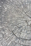 Donnez au vieux bois une consistance rugueuse, vintage en bois de style de fond, modèle en bois photographie stock libre de droits