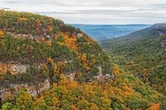 Donnez sur la vue au parc d'état de canyon de Cloudland en Géorgie photographie stock