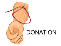 The donors arm with the intravenous system Royalty Free Stock Images