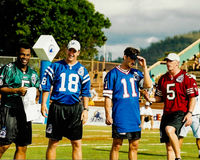 Donovan McNabb, Peyton Manning, Rob Johnson e Jeff Garcia Fotografia Stock Libera da Diritti