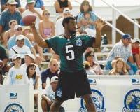 Donovan McNabb Philadelphia Eagles Stock Afbeelding