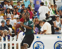 Donovan McNabb Philadelphia Eagles Foto de Stock Royalty Free