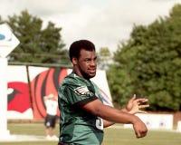 Donovan McNabb, una sfida di 2001 QB Fotografie Stock