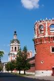 donskoy修道院莫斯科俄国 库存图片