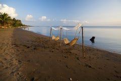 Donsol, столица китовой акулы Стоковые Фото