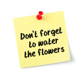 Dont forget to water the flowers Royalty Free Stock Photo