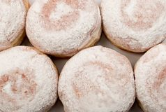 Donut berliner or sufgania. Donut berliner with powdered shugar background. Sufgania top view flat lay Stock Image