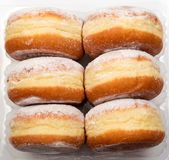 Donut berliner or sufgania. Donut berliners with powdered shugar in plastic box. Sufganias collection Royalty Free Stock Image