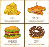 Donut Chips Sandwich and Hamburger Colorful Card stock illustration