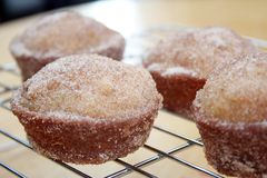 Donut Muffins Stock Photo