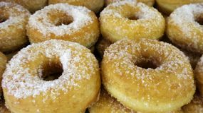 Donut and sugar. Fresh from oven royalty free stock image