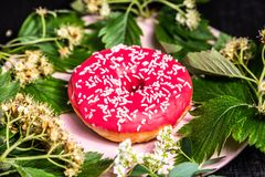 Donut. Sweet icing sugar food. Dessert colorful snack. Treat from delicious pastry breakfast. Doughnut with frosting royalty free stock photography
