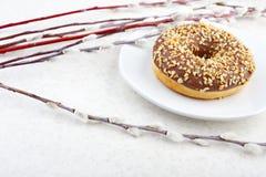 Donut- und Weidenniederlassungen Stockfotos