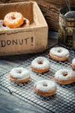 Donuts с сахаром порошка Стоковые Изображения
