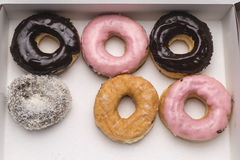 Donuts in a box Stock Photography