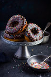 Donuts with chocolate glaze  and colorful sprinkles Royalty Free Stock Image