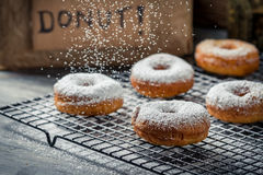 Donuts decorated with icing sugar Stock Images