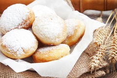 Donuts homemade with powdered sugar Royalty Free Stock Photography