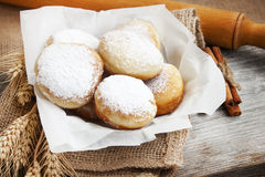 Donuts homemade with powdered sugar Stock Photography