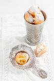 Donuts with powdered sugar on a white background Stock Photos