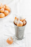 Donuts with powdered sugar on a white background Stock Images