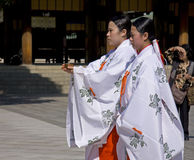 Donzelas na cerimónia de casamento xintoísmo japonesa Fotografia de Stock