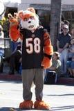 Doo Dah Parade Tiger Royalty Free Stock Images