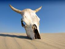 Dood in de Woestijn Stock Afbeelding