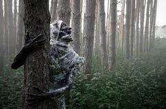 Dood in het bos royalty-vrije stock afbeelding