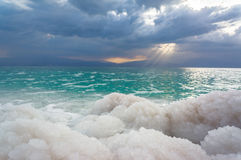 Dood Overzees zout Stock Fotografie