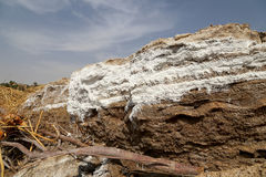 Dood overzees zout in Jordanië stock afbeeldingen