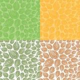 doodle πρότυπο φύλλων άνευ ραφής Στοκ Εικόνες