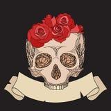 Doodle иллюстрация человеческого черепа с розами бесплатная иллюстрация