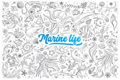 Doodle морской флоры и фауны установленный с литерностью Стоковая Фотография RF