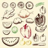 Doodle ajustado - frutas e verdura Imagens de Stock