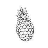 Doodle ananas Zdjęcie Stock