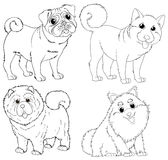 Doodle animal characters for dogs Royalty Free Stock Image